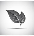 Simple grey of leaves vector image