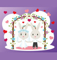 bunnies wedding card vector image