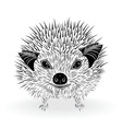 hedgehog head animal for t-shirt vector image