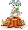 Little bunny holding carrot on tree stump vector image