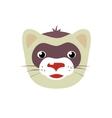 Cartoon ferret animal face vector image