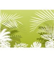 tropical palm background vector image vector image