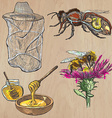 bees beekeeping and honey - hand drawn pack 1 vector image