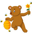 Cute bear vector image