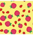 Raspberry cartoon seamless texture 640 vector image