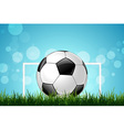 Soccer Ball in Green Grass vector image
