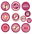 Beauty labels vector image
