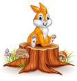 Cute bunny sitting on tree stump vector image