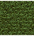 grass seamless background vector image