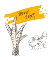 Chicken or turkey foot vector image