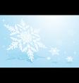 snowflake on snow vector image