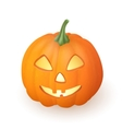 Cartoon funny Jack O Lantern halloween pumpkin vector image