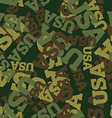 Military camouflage USA American Protective vector image