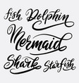 fish and dolphin hand written typography vector image