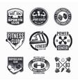 Power Fitness Logo Set vector image