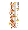 growth measure with monkey vector image