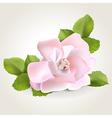 Rose corner vector image