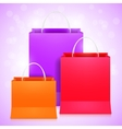Color Shopping Bags vector image vector image