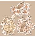 Set of Vintage Birds and Flowers on tags vector image