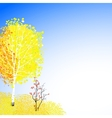 background with autumn decor vector image