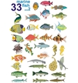 Set - marine fishes vector image
