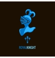knight helmet royal design background vector image