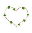 Bauhinia Purpurea Leaves Forming in Heart Shape vector image vector image