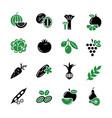 digital green black vegetable icons vector image