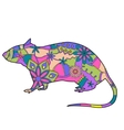 Rat colorful vector image
