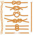 set of ropes and knots vector image vector image