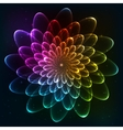 Rainbow colors cosmic flower vector image vector image