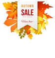 Autumn sales banner vector image