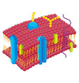 Cell membrane in closer look vector image