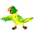 Green yellow parrot cartoon vector image