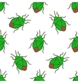 Seamless pattern with shield bug Palomena prasina vector image