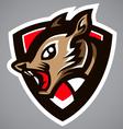 Squirrel gray shield logo vector image