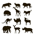 black silhouettes of an african animals lion vector image