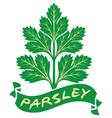 parsley label vector image vector image