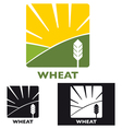 Wheat vector image