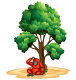 Tree and orangutan vector image vector image