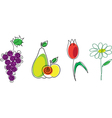 flowers and fruit vector image vector image