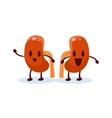 Kidneys Primitive Style Cartoon Character vector image