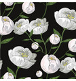 white peony realistic seamless pattern on black vector image