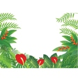 tropical Forest Background vector image vector image