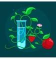 GMO genetically modified vector image