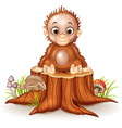 Cartoon cute a baby monkey sitting on tree stump vector image