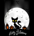 Halloween background with cat and pumpkins vector image