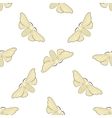 Seamless pattern with butterfly Bombyx mori vector image