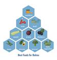 Best foods for babies vector image