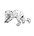 Hand drawn persian cat Barber style vector image vector image